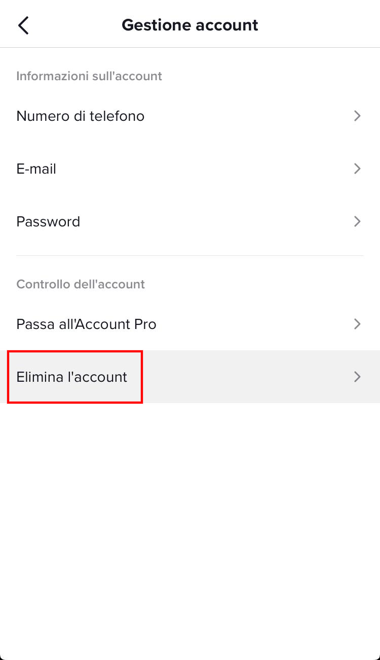 elimina account tiktok elimina l'account